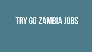 trygozambiajobs