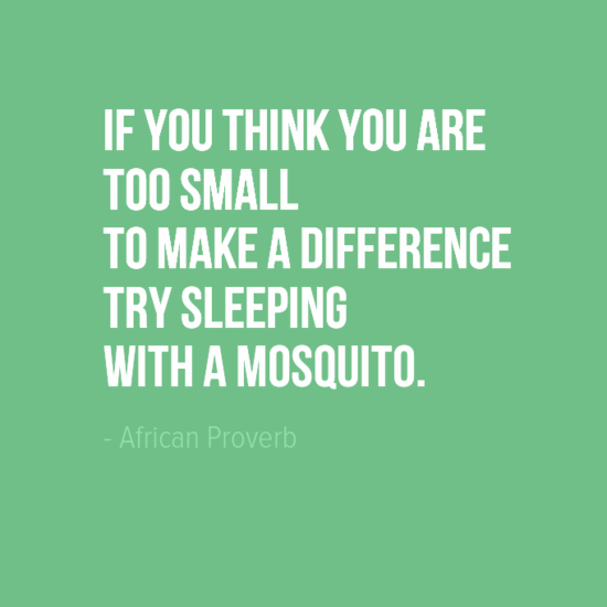 """""""If you think you are too small to make a difference try sleeping with a mosquito."""" African Proverb"""