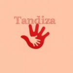 Tandiza Zambia Finance Ltd