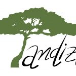 Tandiza Zambia Finance Ltd