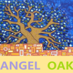 Angel Oak Investment Limited